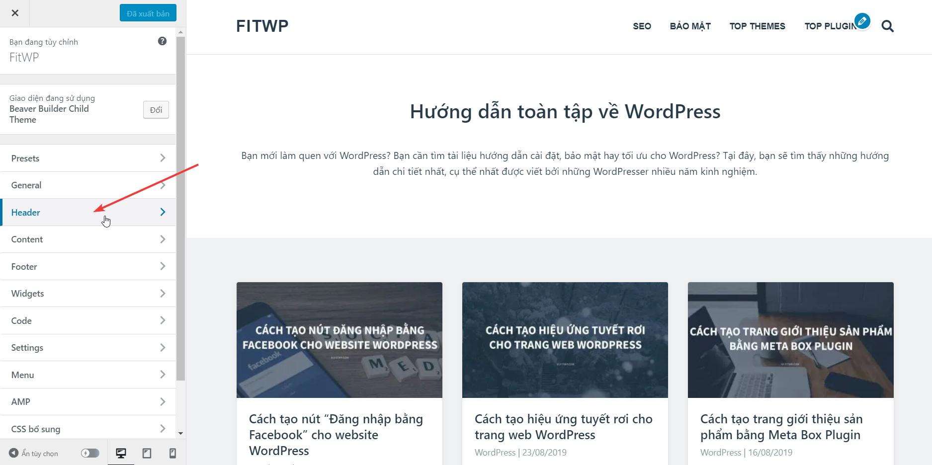giao diện Customizer của theme WordPress